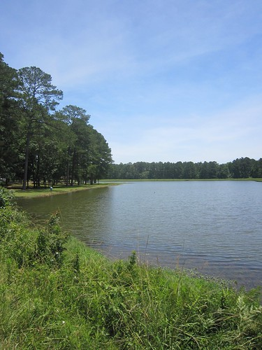 mississippi unitedstates lakes 2012 smithcounty bienvillenationalforest untedstatesforestservice marathonrecreationarea