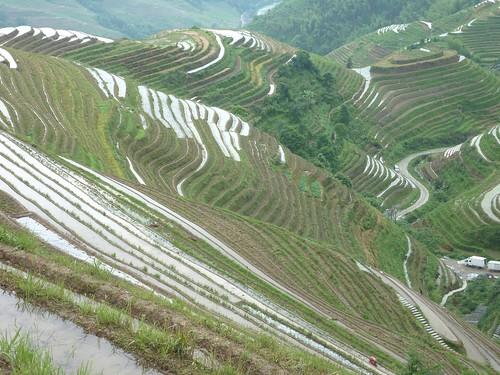 C-Guangxi-Pingan-Terrasse des 9 dragons (22)