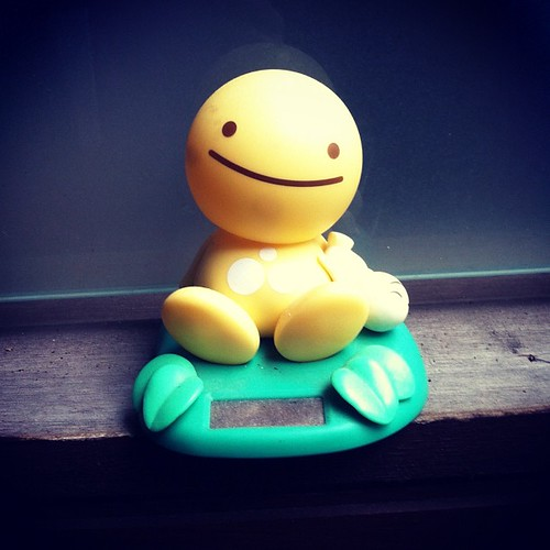 #photoadayjune Day 15 - Yellow.