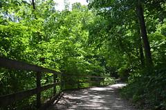 Matthiessen State Park Lower Dells 286