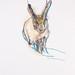 """""""Studio di animale fermato"""", tecnica mista su carta, 35x50cm, 2011"""