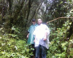 In the jungle near the top of Volcan Atitlan