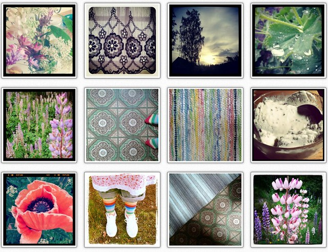 Collecting Flowers & patterns on Instagram
