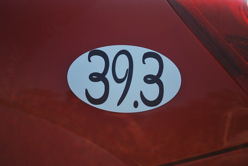 39.3 Goofy's Race and Half Challenge Car Magnet