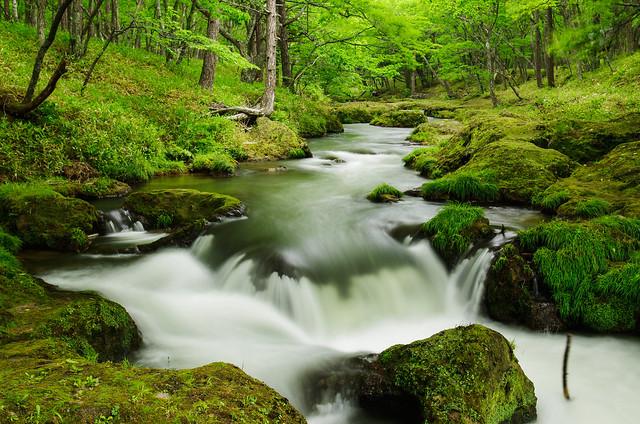 竜頭の滝の源流