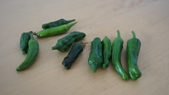 hot green pepper