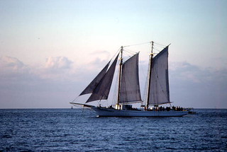 The Schooner Western Union at sunset: Key West, Florida