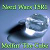 MeltinT5R1