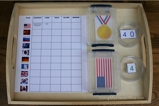 Olympic Medals Math and Geography Tray