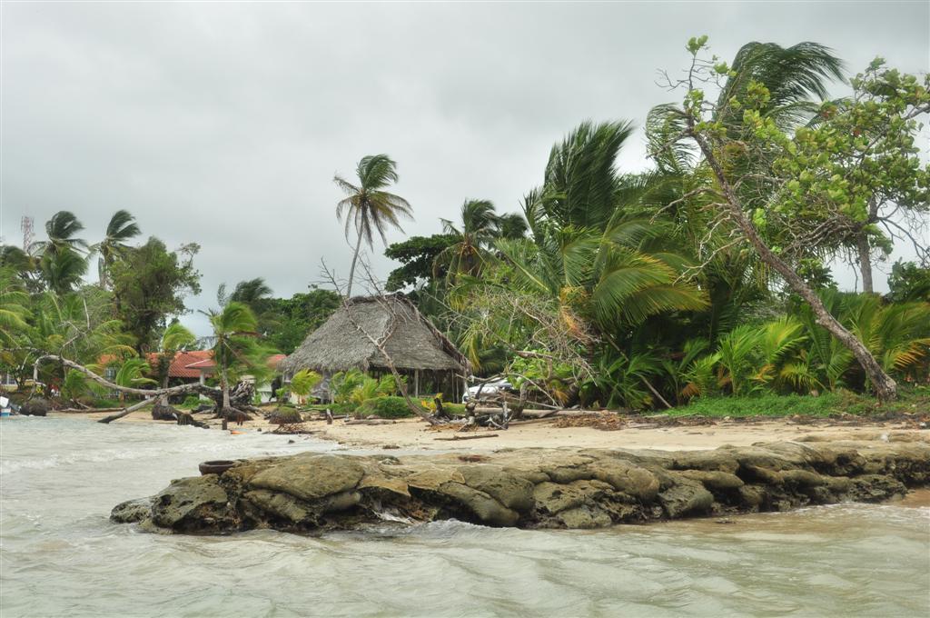 Boca del Drago tiene unas cristalinas aguas, unas poco profundas playas y unos estupendos restaurantes bocas del toro - 7598267104 d303752152 o - Bocas del Toro, escondido destino vírgen en Panamá