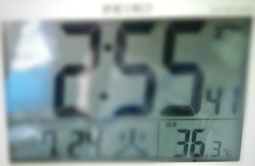 36.3℃