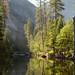 Merced River in early morning by Stephen Gravrock