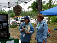 Sherry and Jennifer and the bald-faced hornet nest