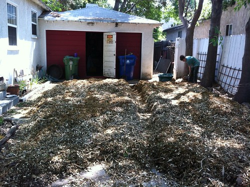 The Mulch Pile