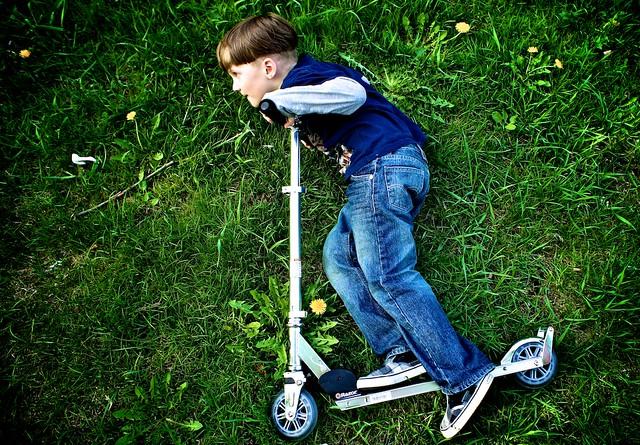 anteketborka.blogspot.com,fly3