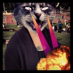 "Congratulations, ""Catwang"". You are my new favourite iOS photo editor."
