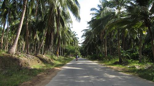 Koh Phangan Holiday (3)
