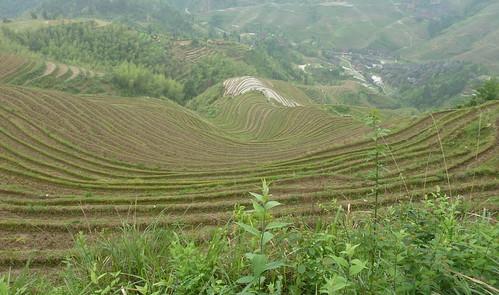C-Guangxi-Dazhai-montee (21)