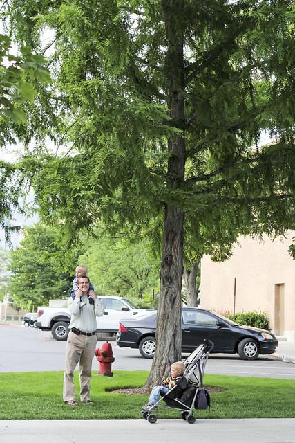 IMG_1300June2012demilleartmuseumandtreewalk