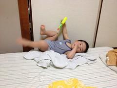 夜寝る前のとらちゃん(2012/6/7)