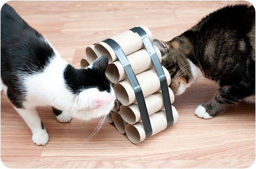 Crafty Cat Toys