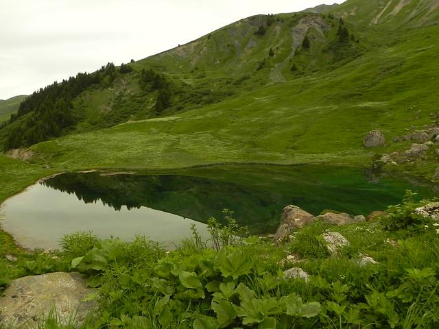 Lac des fées en vert
