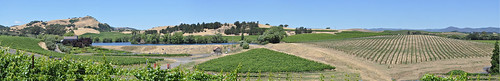 Panorama View from Domaine Carneros ~ Napa, CA