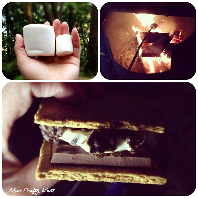 Camping - Smores Collage