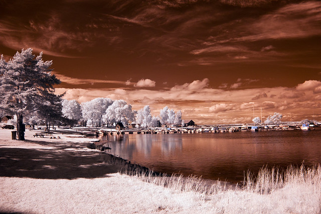 7529183836 18da9438de z Flickr Spotlight – InfraRed Madness