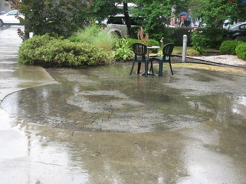 Rain by susanvg