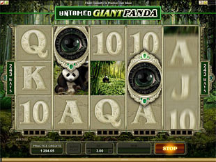 Untamed - Giant Panda Slot Machine