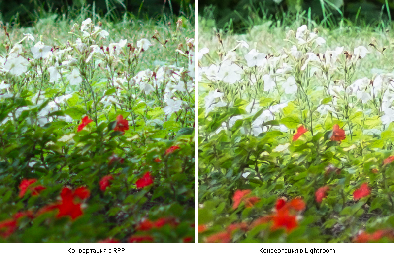 rpp_lightroom