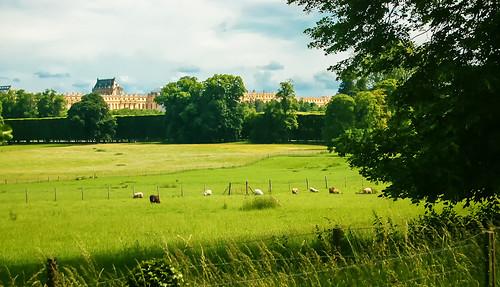 Versailles Gardens - Bucolic Landscape