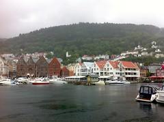 Bergen harborview