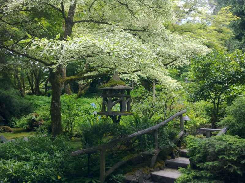 Japanese garden en jardines Butchart Canada 30