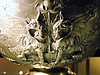 """Griffins - copy of a lost original from the Hildesheim Treasure (late 1st century BC-early 1st century AD; detail) - Rome, Museo della Civiltà Romana - Exhibition """"Myth and Nature"""" at Archaeological Museum of Naples, until September 30, 2016"""