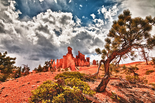 bryce canyon 3 by joeeisner