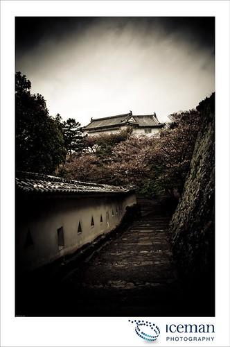Himeji Castle 282
