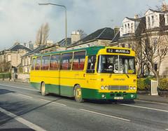 Lowland Omnibuses.