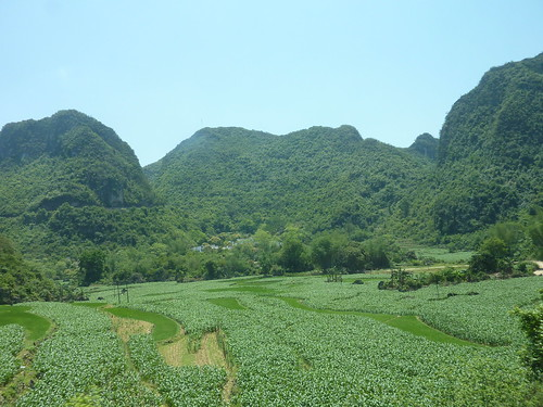 C-Guangxi-Route Chutes Detian (76)