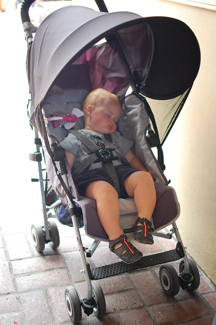 Passed out in the stroller.