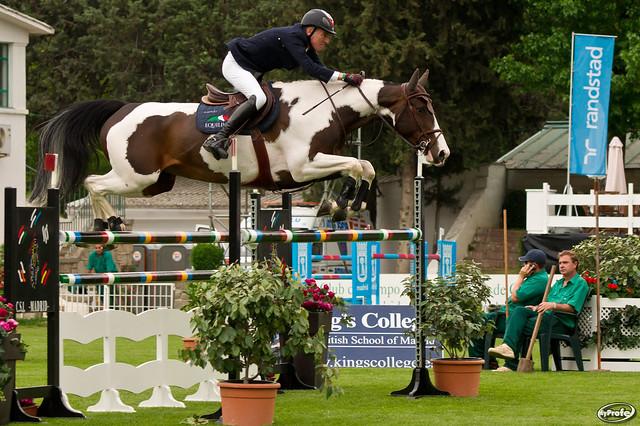 Loisir ou compétition, tous les chevaux ont le même fonctionnement digestif et requièrent les mêmes attentions.