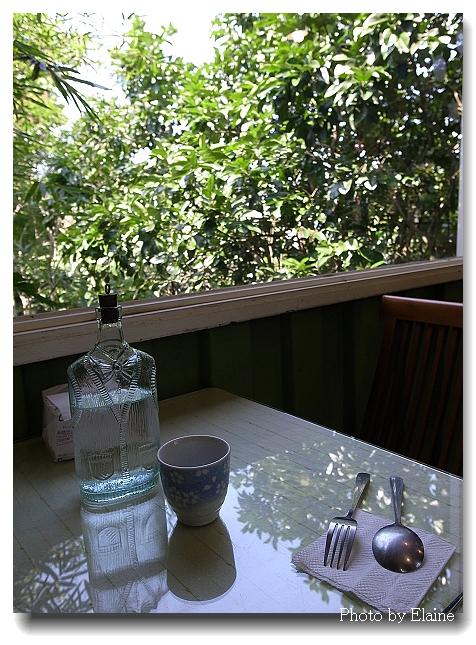 桑妮浩斯窗邊樹影