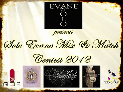 Solo Evane Mix and Match Contest 2012 by Ellendir Khandr MMV 2012 Miss Costa Rica