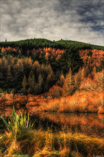 new autumn trees portrait sky brown lake dan clouds forest canon landscape photography photo lawrence scenery scenic images zealand browns nz end hdr gabriels foreground gully goodwin dhg 60d pommedan dgimages
