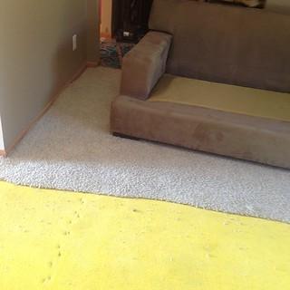 Bye bye old carpet!