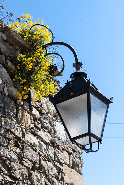 Kamianets Town Light