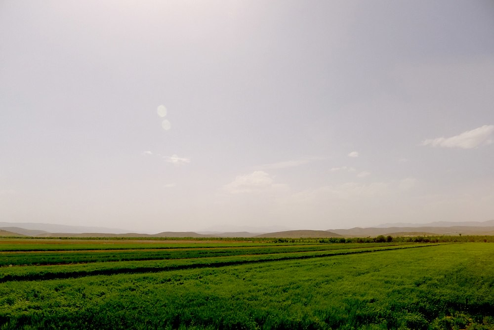 yazd-shiraz-L1030095