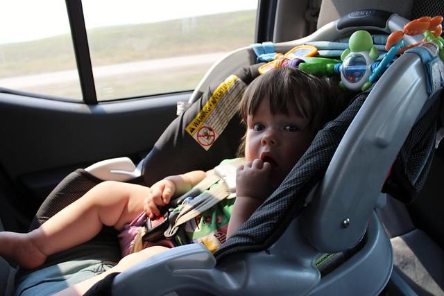Infant Girl Car Seat Stroller Combo