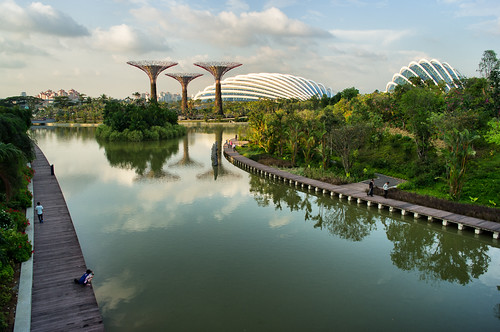 Dragonfly Lake, super trees and the 2 cooled conservatories, viewed from the Dragonfly bridge